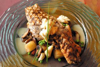 Virtual gourmet for Red fish recipes
